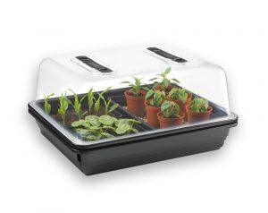 Propagation & Young Plants